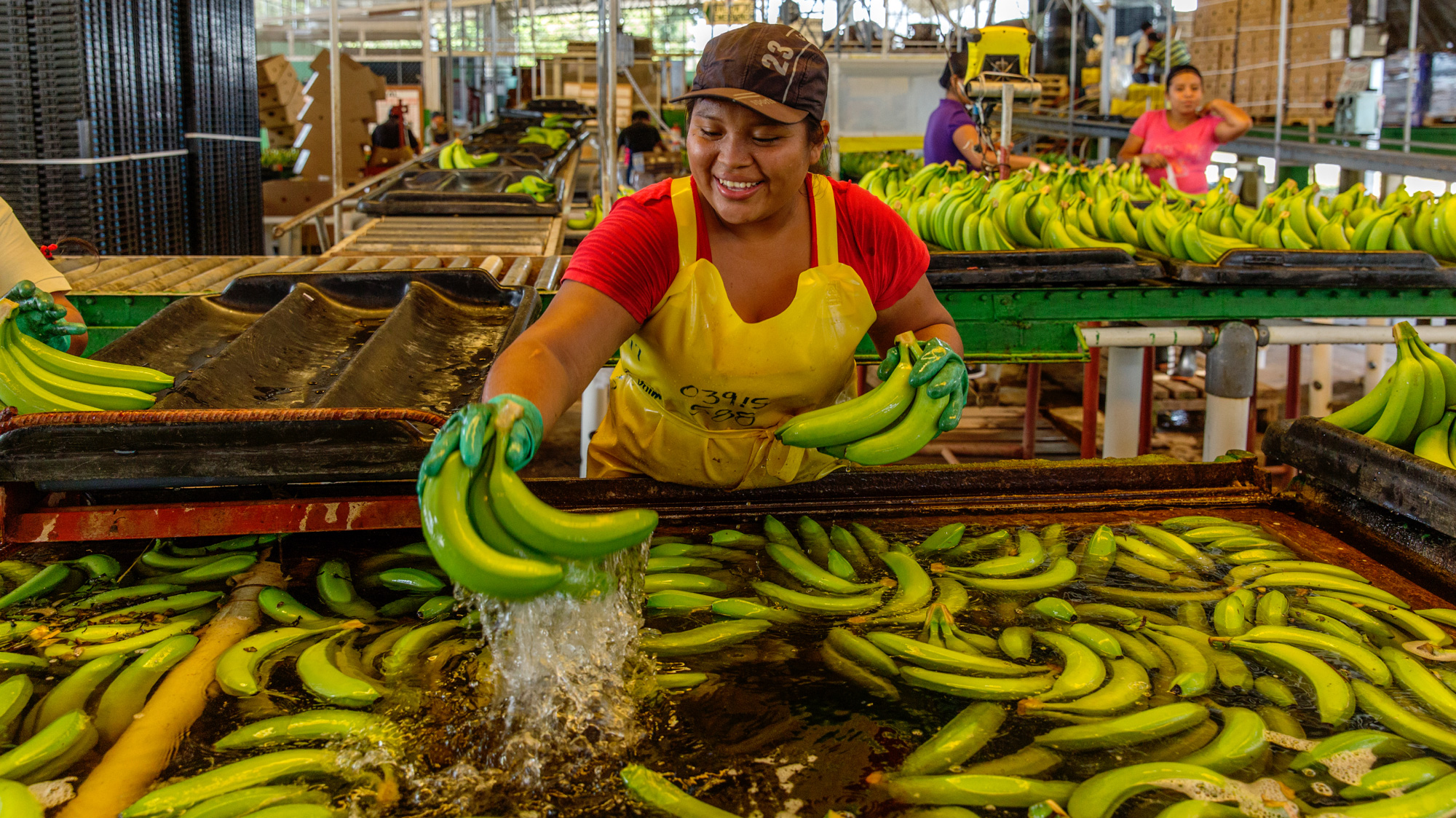 Woman cleaning bananas