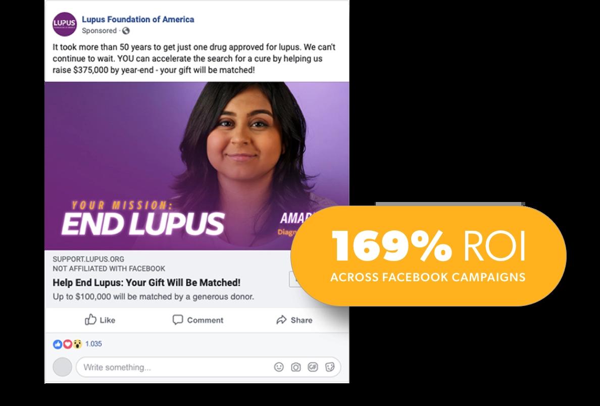 Lupus image panel 4